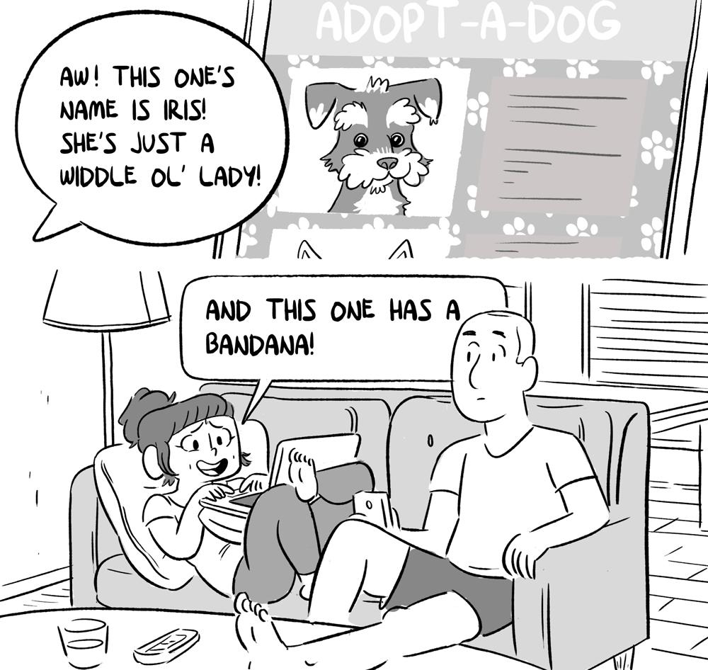 dogsA