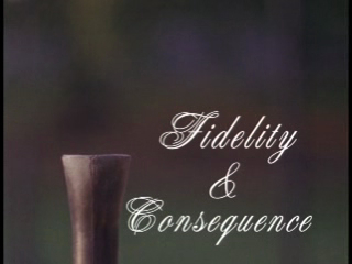 Fidelity & Consequence
